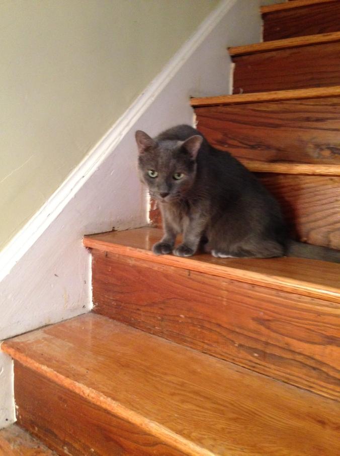 Karl on stairs
