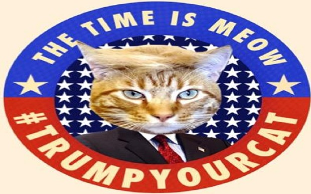 Trump_your_cat_3585389b