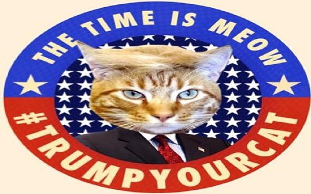 Trump_your_cat_3585389b